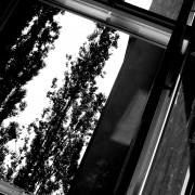 De sa fenêtre Berlin 2012