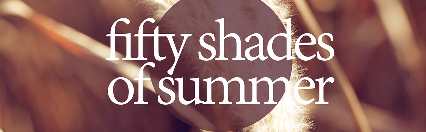 slide Fifty Shades of Summer - Lucie Brémeault-1